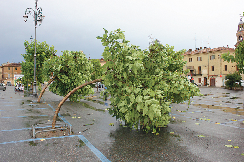 Prima - Tornado