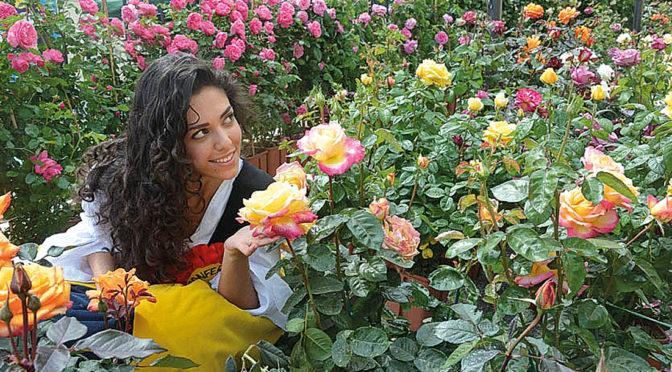 «Riso&Rose»: gli appuntamenti del fine settimana