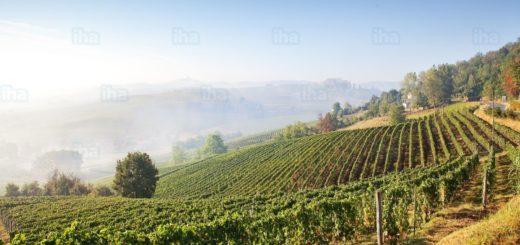 Cerrina-monferrato-Astigiano-in-piemonte