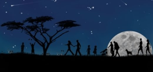 Passeggiata sotto le stelle