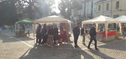 Festival Vini