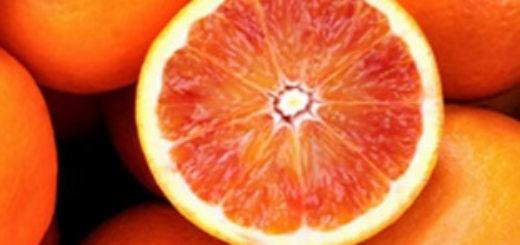 arance-arancie