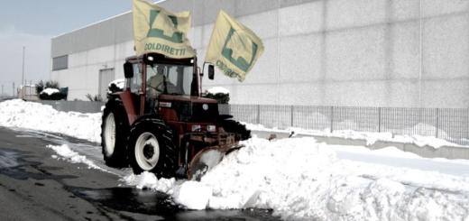 trattore spazzaneve ok(1)