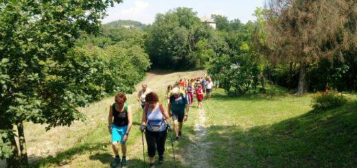 camminata delle cinque chiese
