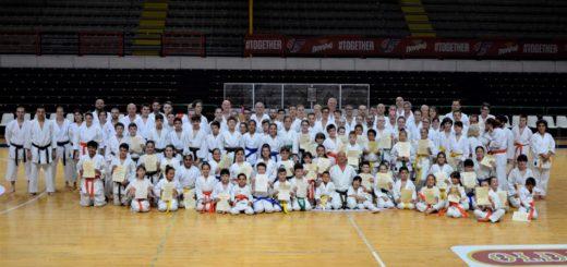 squadre karate