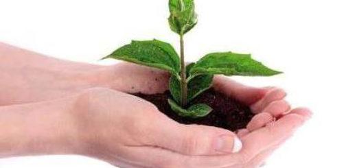 Monferrato green farm