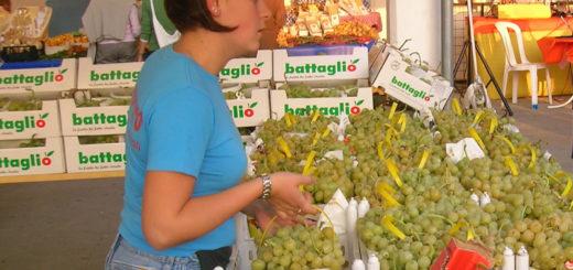 Dal 28 aprile riapre il mercato con la sezione alimentare