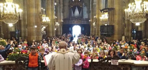 24-05-2018 festa santa rita benedizione rose bambini san domenico