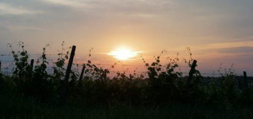 tramonto - foto m.b.