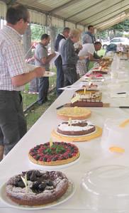17-06-2010 coniolo concorso  torta di nonna papera